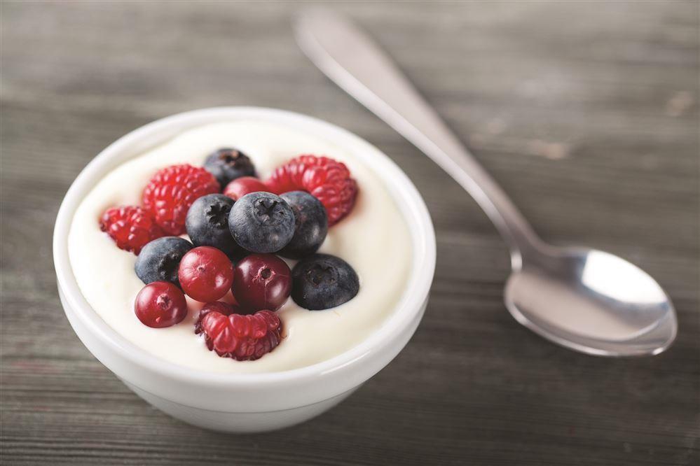 Mixed Berry Yogurt